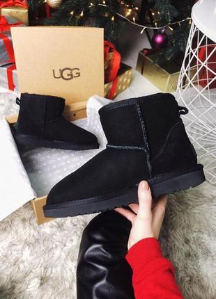 Ugg classic mini black натуральные женские зимние сапоги угги ...