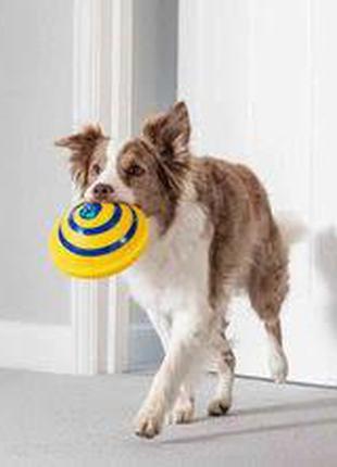 Игрушки для собак с пищащим звуком, диск Гав планер