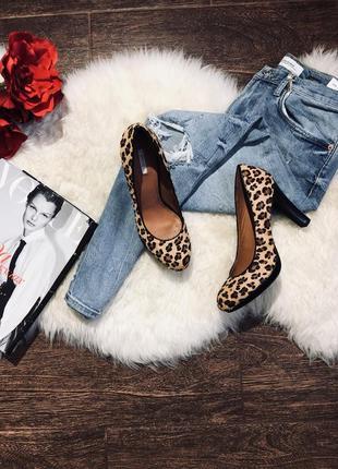 Шикарные леопардовые кожаные туфли
