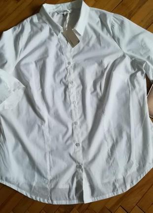 Белая базовая блуза большого размера