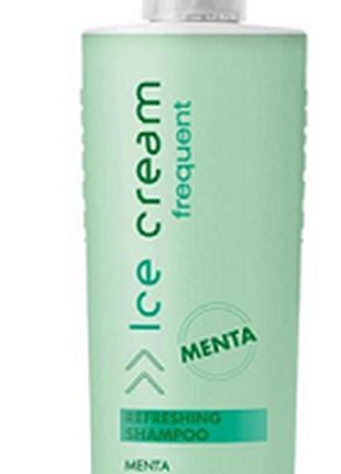Шампунь для волос освежающий с мятой Inebrya Frequent 300ml (2...