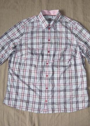 Walbusch extraglatt (l/xl) рубашка женская натуральная