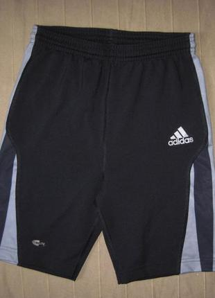 Adidas (s) equipment climalite эластичные шорты тайтсы женские
