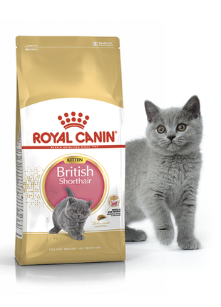 Сухой корм Royal Canin British Shorthair Kitten,10кг,