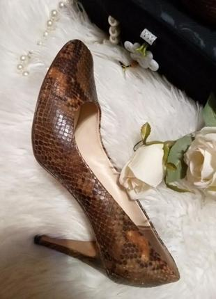 Туфли - питон , рептилия,кожа.