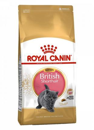 Сухой корм для кошек Royal Canin British Shorthair Kitten, 2 кг.