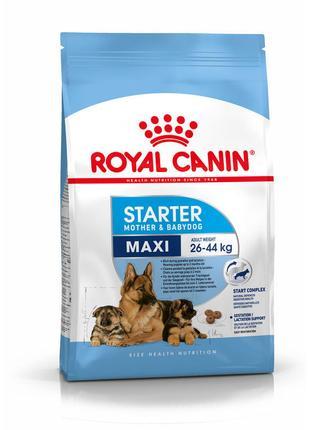 Корм для собак Royal Canin Maxi Starter,15 кг.