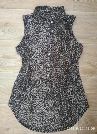 Летняя блуза с удлиненным задом