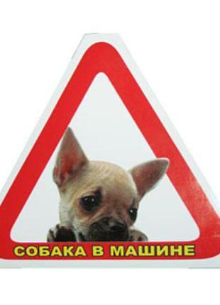"""Наклейка """"Собака в машине"""" С-10 (треугольник) (С-10)"""