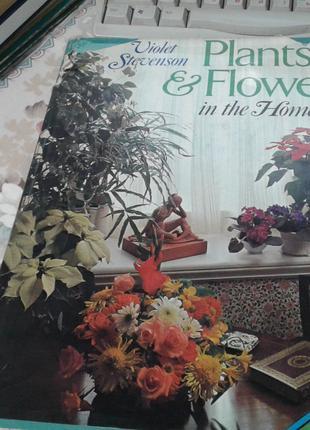 """Plants &Flowers in the home""Violrt Stivenson- цветы и декор дома"
