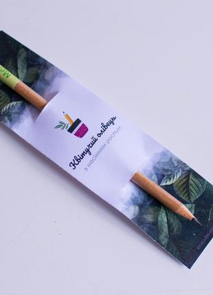 растущий карандаш, живые карандаши, живая канцелярия, экокуб