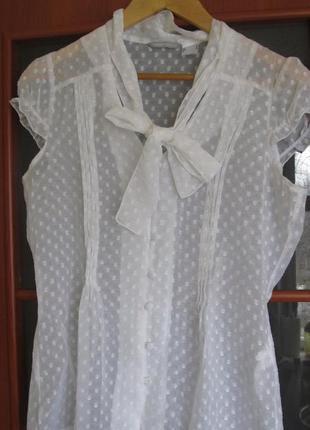 Нежная прозоачная романтичная блузка сеточка