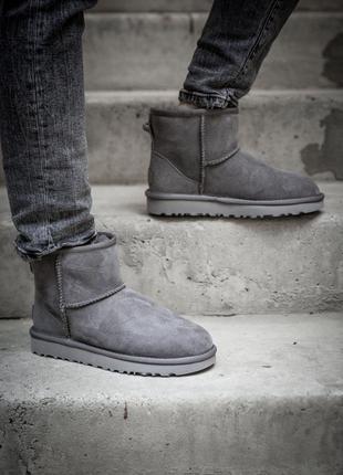 Ugg classic mini grey! женские замшевые зимние угги/ сапоги/ б...