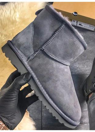 Женские зимние Ugg Classic Short Gray, серые замшевые угги кла...