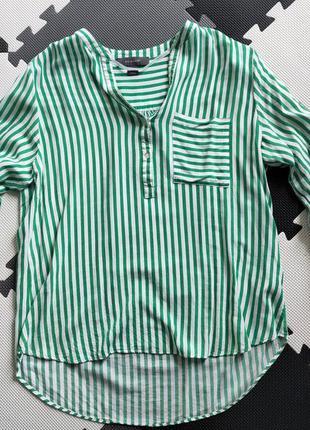Блузка, кофта в полоску, полосатая