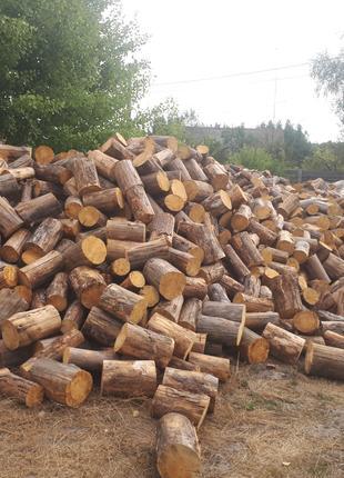 Продам  дрова ДУБ СОСНА метровка чурка рубаные