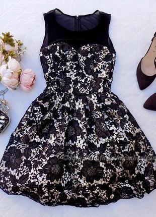 Платье шикарное кружевное пышное chi chi london кружево фатин