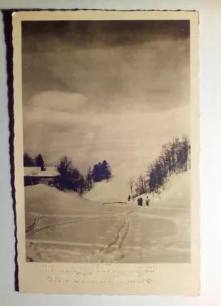 Открытки 1904г