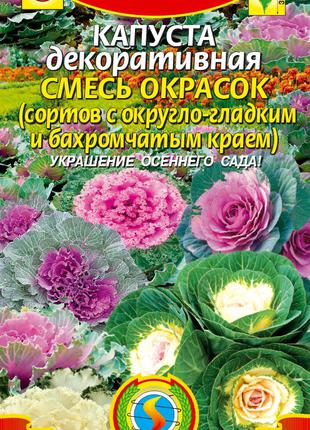 Капуста декоративная Смесь окрасок 15 шт (Плазменные семена)