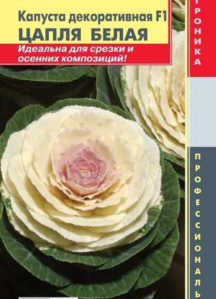Капуста декоративная F1 Цапля Белая 5 шт (Плазменные семена)