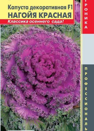 Капуста декоративная F1 Нагойя Красная 7 шт (Плазменные семена)