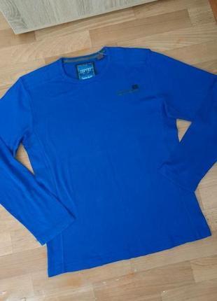 Синяя мужская кофта, футболка с длиным рукавом esprit