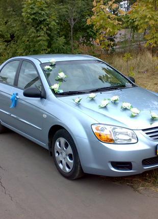 Транспорт, транспортные услуги на свадьбу