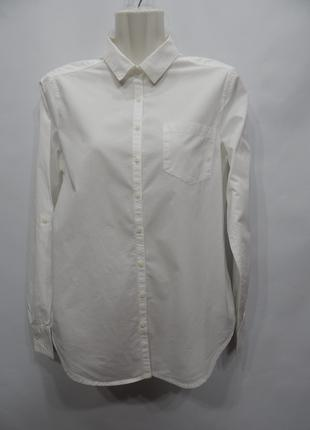 Рубашка фирменная женская хлопок BENETTON UKR 46- 48 EUR 38- 4...