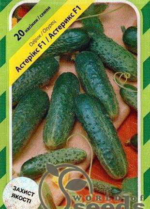 Огурец «Астерикс» F1 20 семян, А Бейо (Bejo)