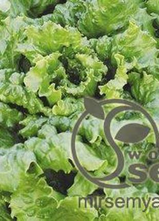 """Семена салата """"Одесский кучерявец"""" 1 кг"""