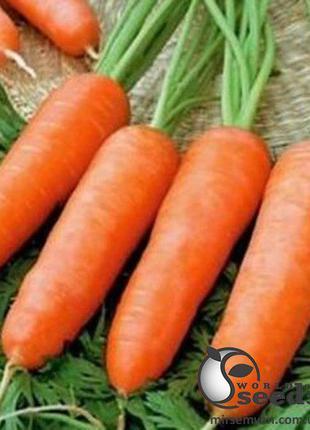 """Морковь """"Кордоба/ Cordoba"""" F1 (1,6-1,8 мм) 100 000 сем. Бейо (..."""