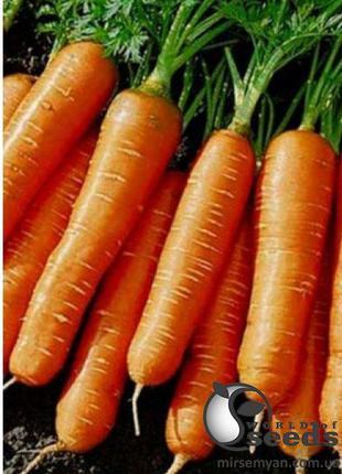 """Морковь """"Балтимор /Baltimor F1 """" (2-2,2) 100 000 сем. Бейо, ( ..."""