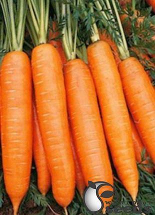"""Семена моркови """" Бангор F1/ Bangor F1 """" (2,2-2,4 мм) 100 000 с..."""