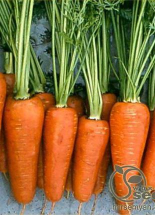"""Морковь """"Комет"""" 500 г. Хазера, (Hazera)"""