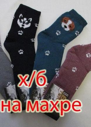Носки женские х/б махровые 36-40р., собачки, г. александрия!