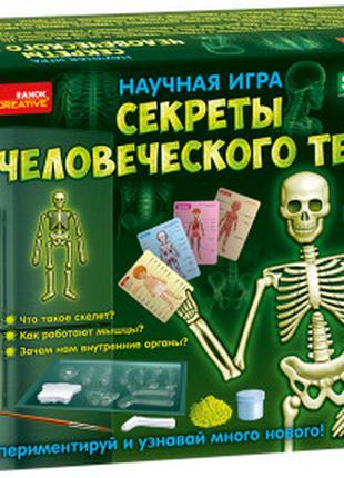 Научная игра Секреты человеческого тела, 12115017Р, для детей ...