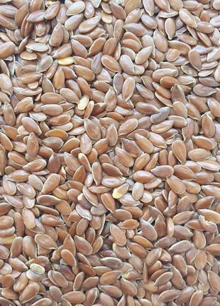 Льон (семена) 50 гр (Свежий урожай)