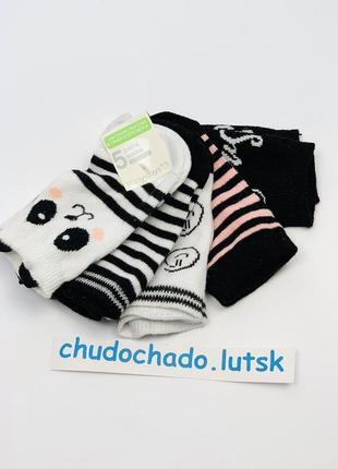 Носочки с пандой для девочки, упаковка