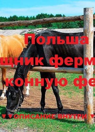 нужен Помощник фермера на конную ферму