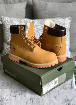 Зимние ботинки на меху Timberland Yellow