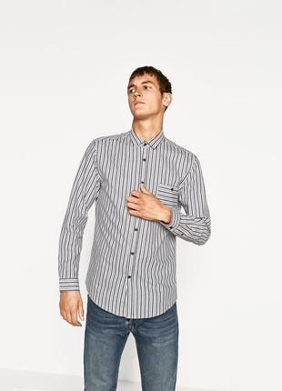 Чоловіча сорочка в полоску zara man