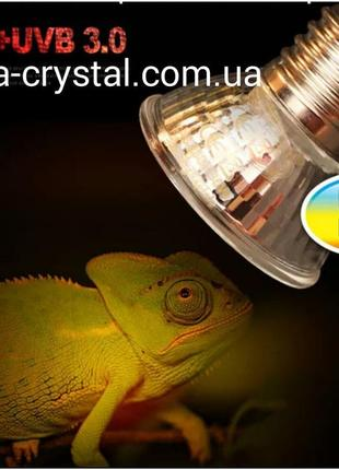 Лампочка уф для рептилий. Интернет-магазин. Доставка по Украине