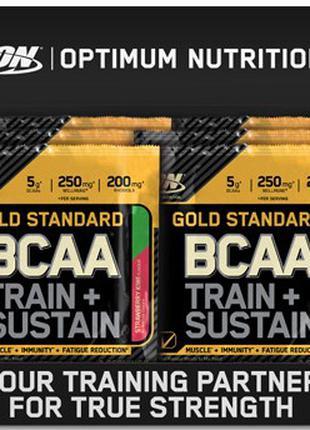BCAA 19г train sustain ON БЦАА аминокислоты родиола и электролиты