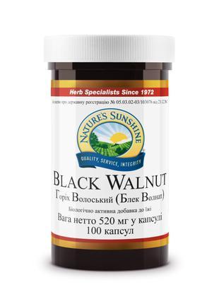 Black Walnut NSP, Грецкий черный орех, НСП, США. Противоглистн...