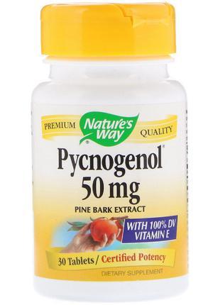 Пикногенол, Экстракт Сосновой Коры, Pycnogenol, Pine Bark Extr...