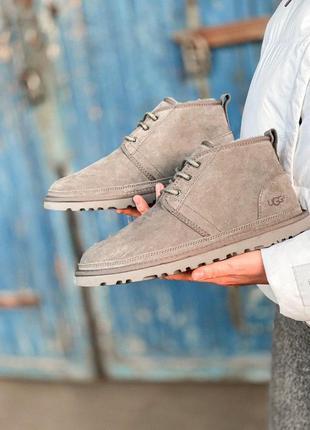 Шикарные зимние мужские ботинки ugg в сером цвете /осень/зима/...