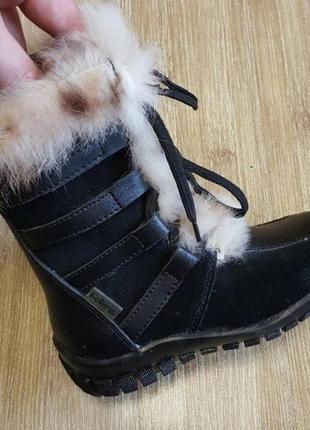 Зимние сапоги buddy dog