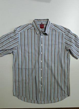 Фирменная хлопковая рубашка