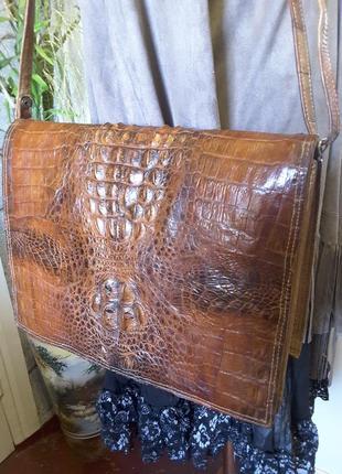 Сумка-папка из натуральной кожи крокодила