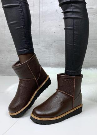 ❤ женские коричневые зимние кожаные ботинки сапоги полусапожки...